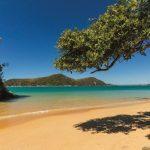 Nouvelle-Zélande, surprenant pays du long nuage blanc